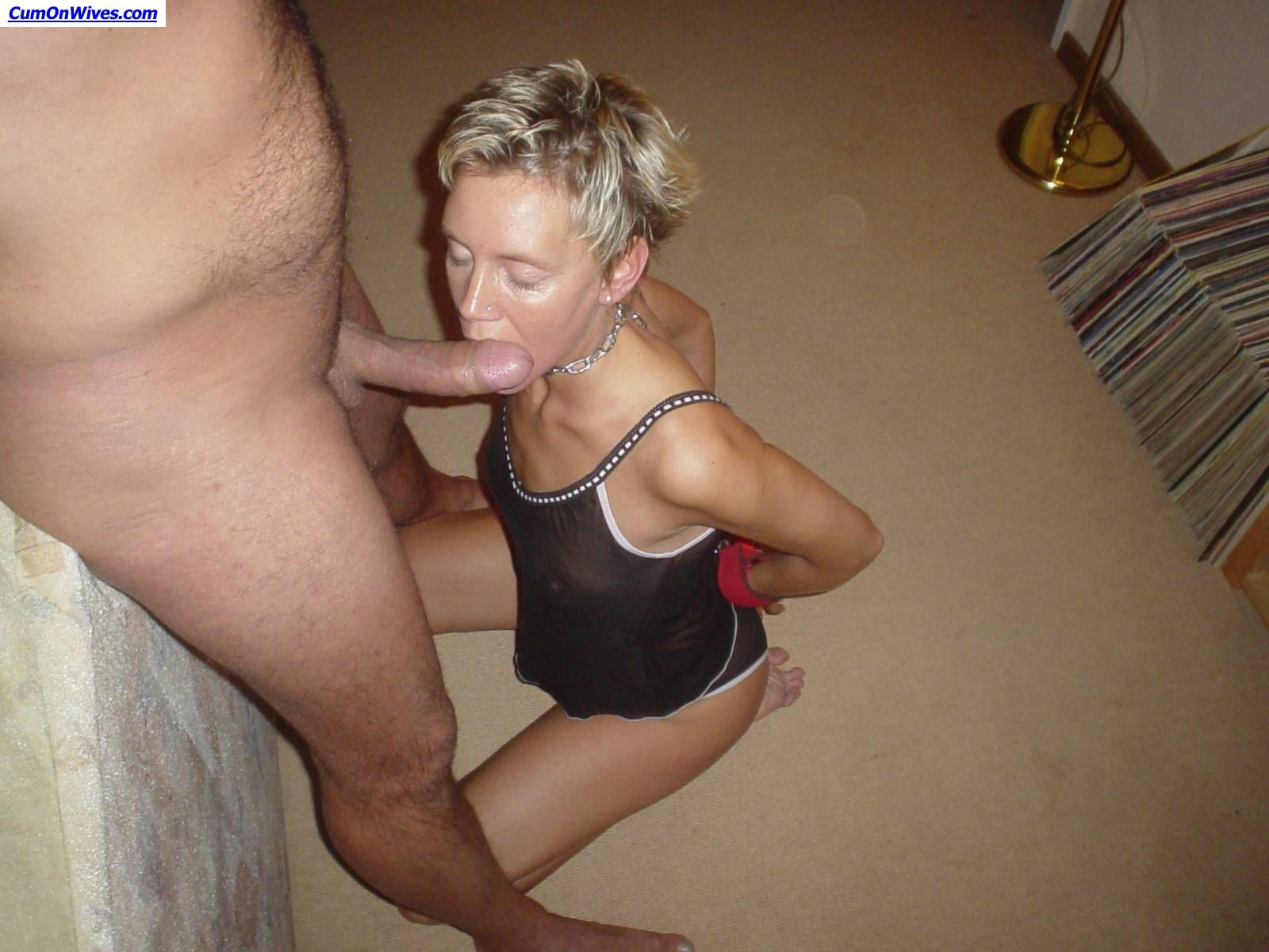 Fanatical juvenile wives drilled and facialed