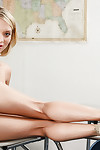 Diet coed princess with willowy legs and undersize billibongs Dakota Skye posing