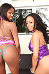 Fixed ass and massive mounds of Brown beauty Anya Ivy licked out by Lola