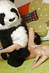 Sweet teen-age blonde enjoys a hardcore enjoy with her panda equipment